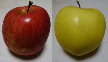 20141129-apple 6 なし (14)-加工