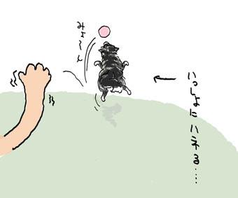 ボール拾い5