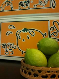 20101115木野本さんレモン