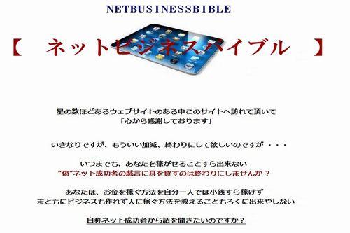 ネットビジネスバイブル