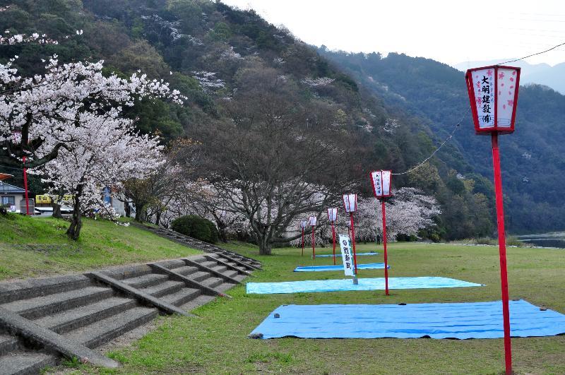 西条市福武 武丈公園 お花見