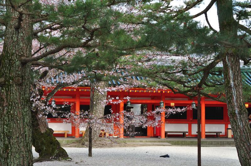 京都市 平安神宮