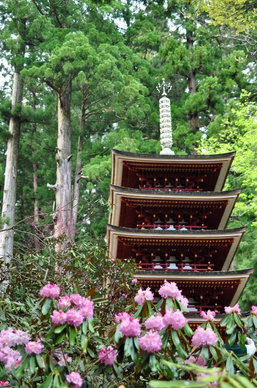 奈良県 室生寺 境内
