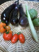 20100715収穫
