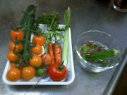 20100718収穫