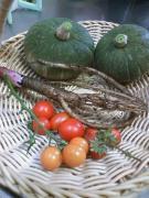 20100722収穫