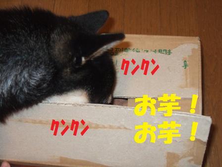 blog4897.jpg