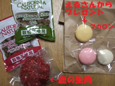blog4946.jpg
