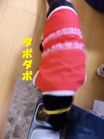 blog4993.jpg