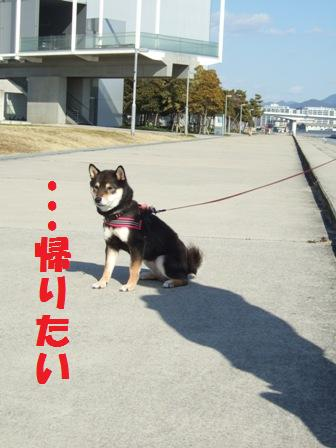 blog5076.jpg