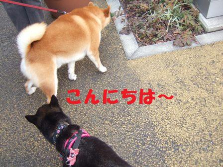 blog5107.jpg