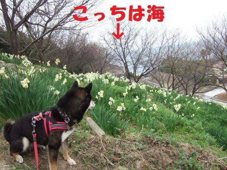 blog5129.jpg