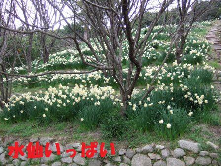 blog5130.jpg
