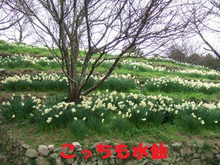 blog5131.jpg