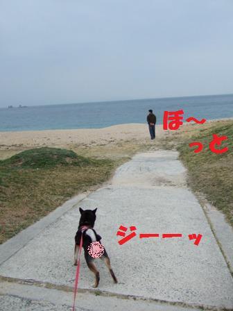 blog5134.jpg