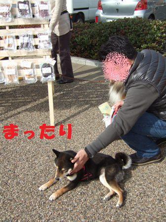 blog5176.jpg