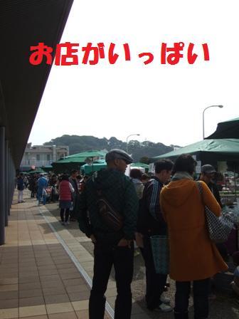 blog5178.jpg