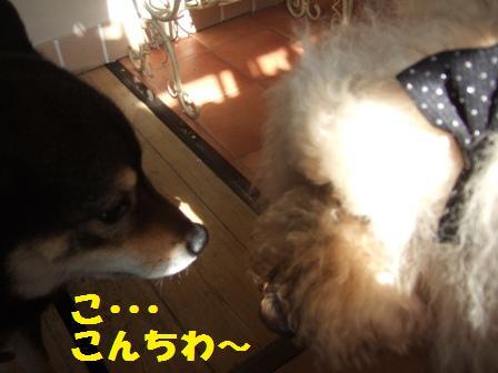 blog5257.jpg