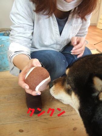 blog5258.jpg