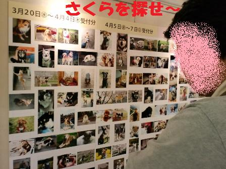 blog5479.jpg