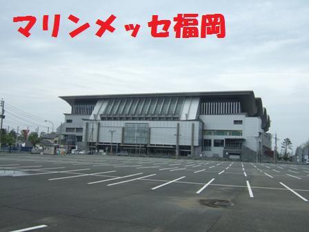 blog5499.jpg