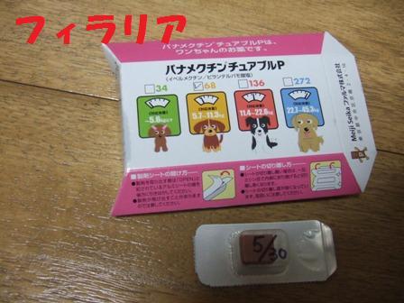 blog5578.jpg