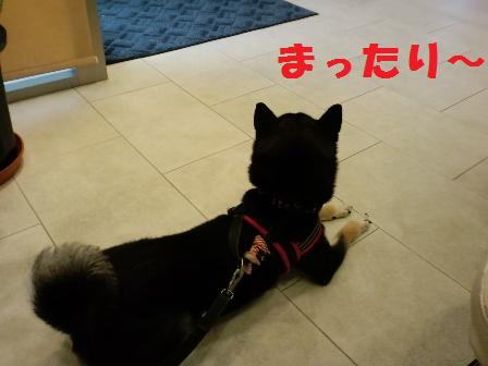 blog5661.jpg