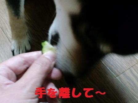 blog5701.jpg