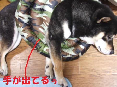 blog5864.jpg