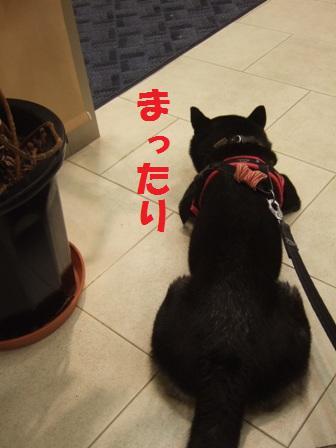 blog5873.jpg