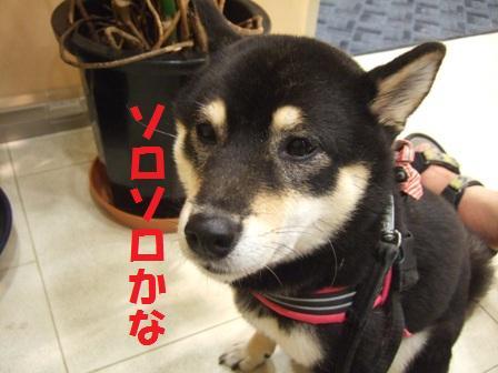 blog5874.jpg
