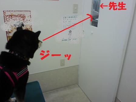 blog5973.jpg
