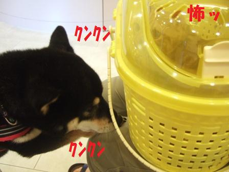 blog5982.jpg