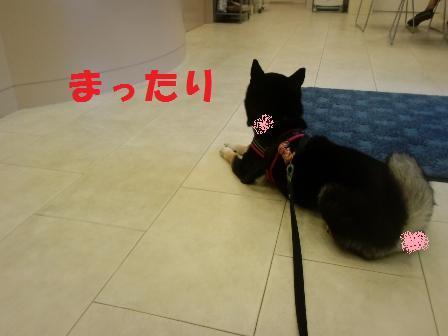 blog6020.jpg