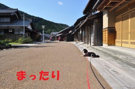 blog6098.jpg