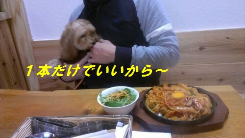 IMG_2013011211928.jpg