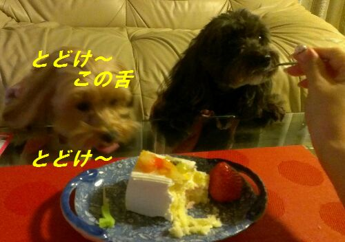 IMG_2013012143286.jpg