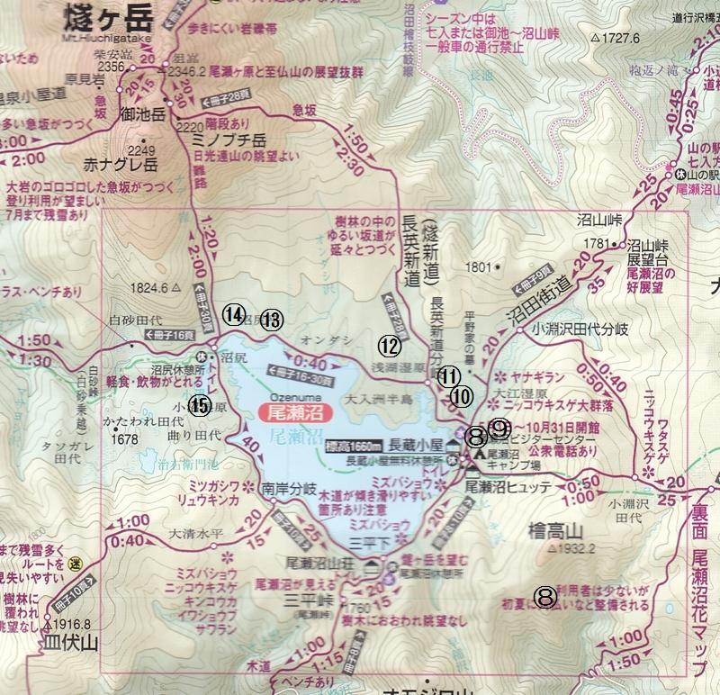 尾瀬花のマップ2