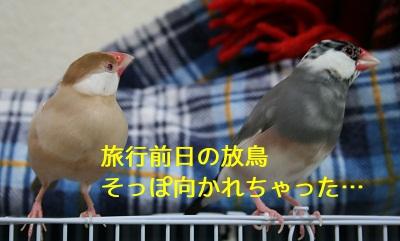 20111005_1797.jpg