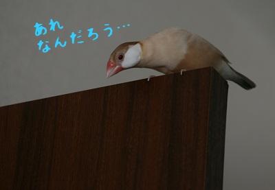 20111020_1832.jpg