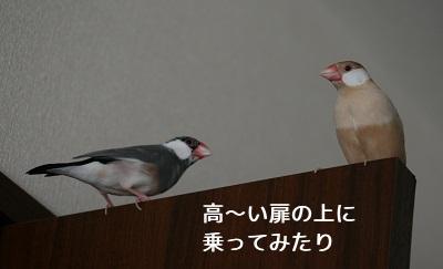 20111020_1833.jpg