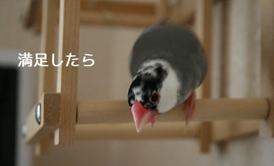 20111021_1841.jpg