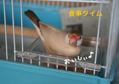 20111021_1844.jpg