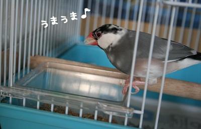 20111021_1857.jpg