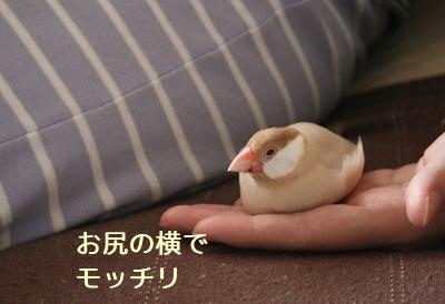 20111029_1866.jpg