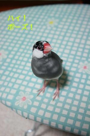 20111029_1894.jpg