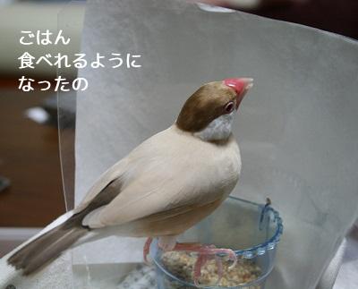 20111105_1928.jpg