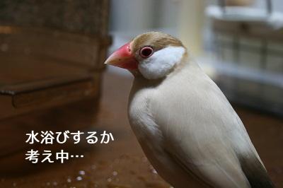 20111107_1949.jpg