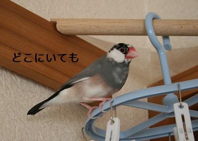 20111117_2000.jpg