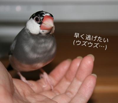 20111217_2101.jpg